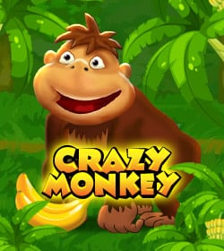 casino crazy monkey