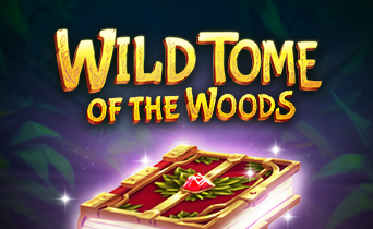 игровые автоматы Wild Tome of the Woods