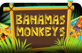 Bahamas Monkeys